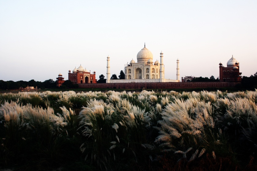 ekntrtmz https://unsplash.com/search/taj-mahal?photo=wvATJmyyXvc