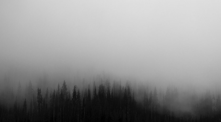 patrick-hendry https://unsplash.com/search/fog?photo=37ZuGYD3JOk