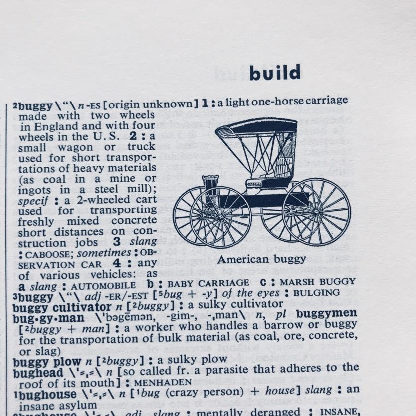 American buggy