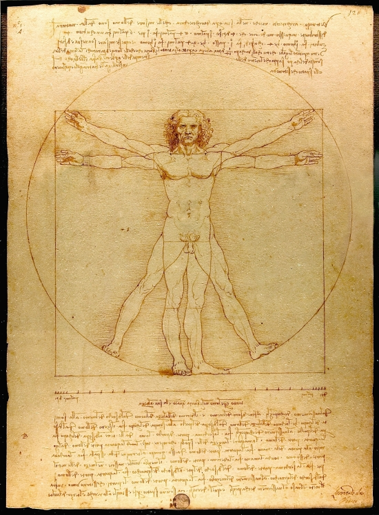 https://www.wikiart.org/en/leonardo-da-vinci/the-proportions-of-the-human-figure-the-vitruvian-man-1492/
