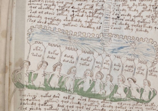 The Voynich Manuscript p. 136