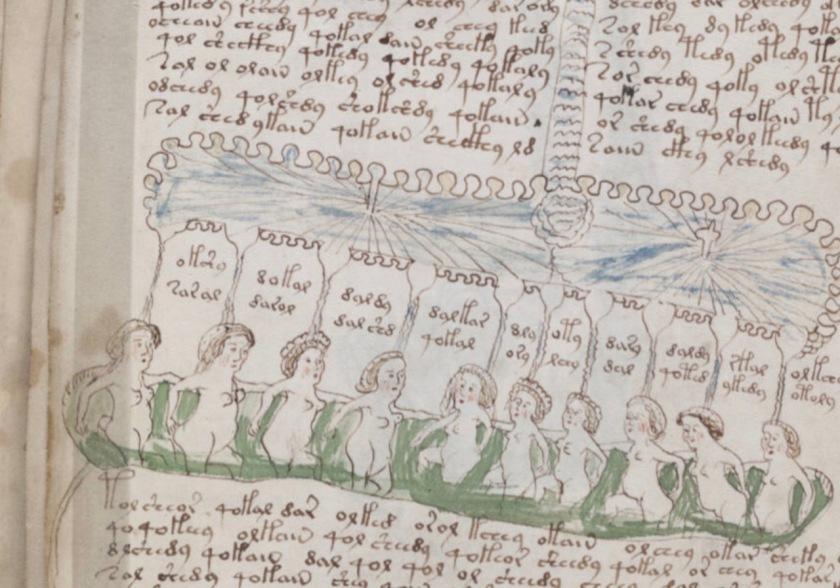The Voynich Manuscript p. 136