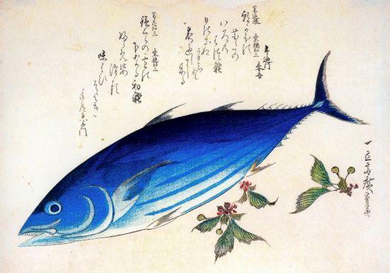 https://www.wikiart.org/en/hiroshige/katsuwonus-pelamis